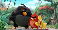 Mini_angry-birds-movie-hd-wallpapers-1